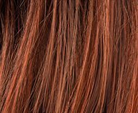 Cinnamon Rooted (33.29.30)